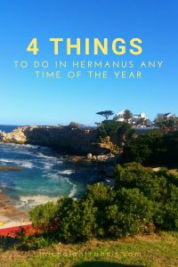 4 things to do in Hermanus any time of the year - michalah francis