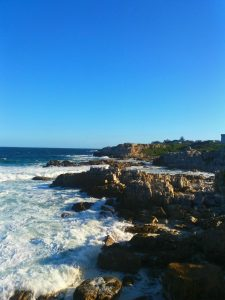 4 things to do in Hermanus anytime of the year - michalah francis-min