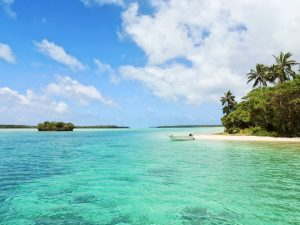 6 visa-free countries South Africans can visit Jamaica michalah francis