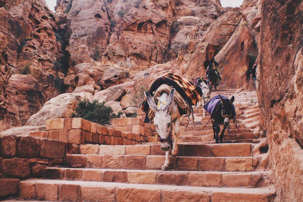 Jordan michalah francis dream travel bucket list petra